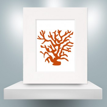 coral_onshelf_single4_orange