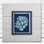 Framed Coral Print