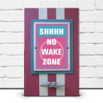 Pink & Turquoise Shhhh, No Wake Zone Framed Print