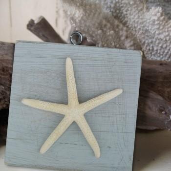 ornaments_coral_seafoam_lgstar
