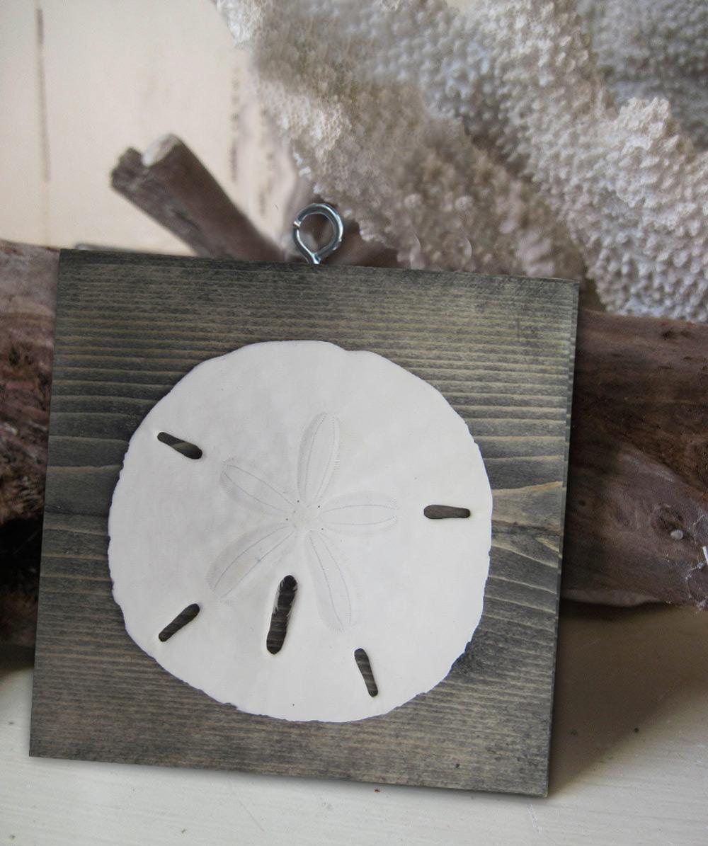 Sand dollar ornament - Ornaments_turquoise_sdollar2 Ornaments_driftwood_sdollar Ornaments_seafoam_sdollar2 Ornaments_seafoam_sdollar Ornaments_driftwood_sdollar2
