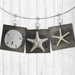 ornaments_sets_driftwood
