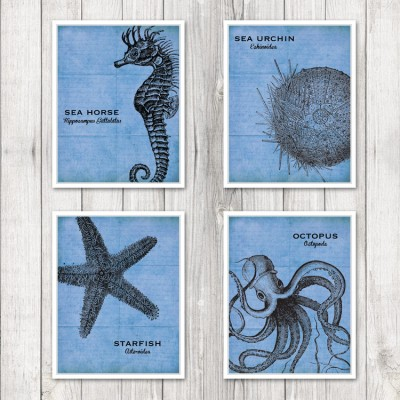 Set of 4 Sea Specimens in Cobalt Blue