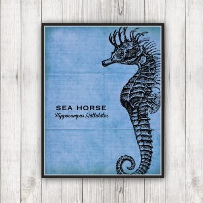 Sea Specimen Seahorse Print