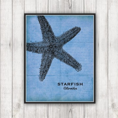 Sea Specimen Starfish Print