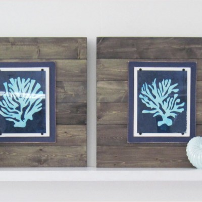 Set of 2 Driftwood Framed