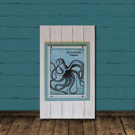 octopus frame