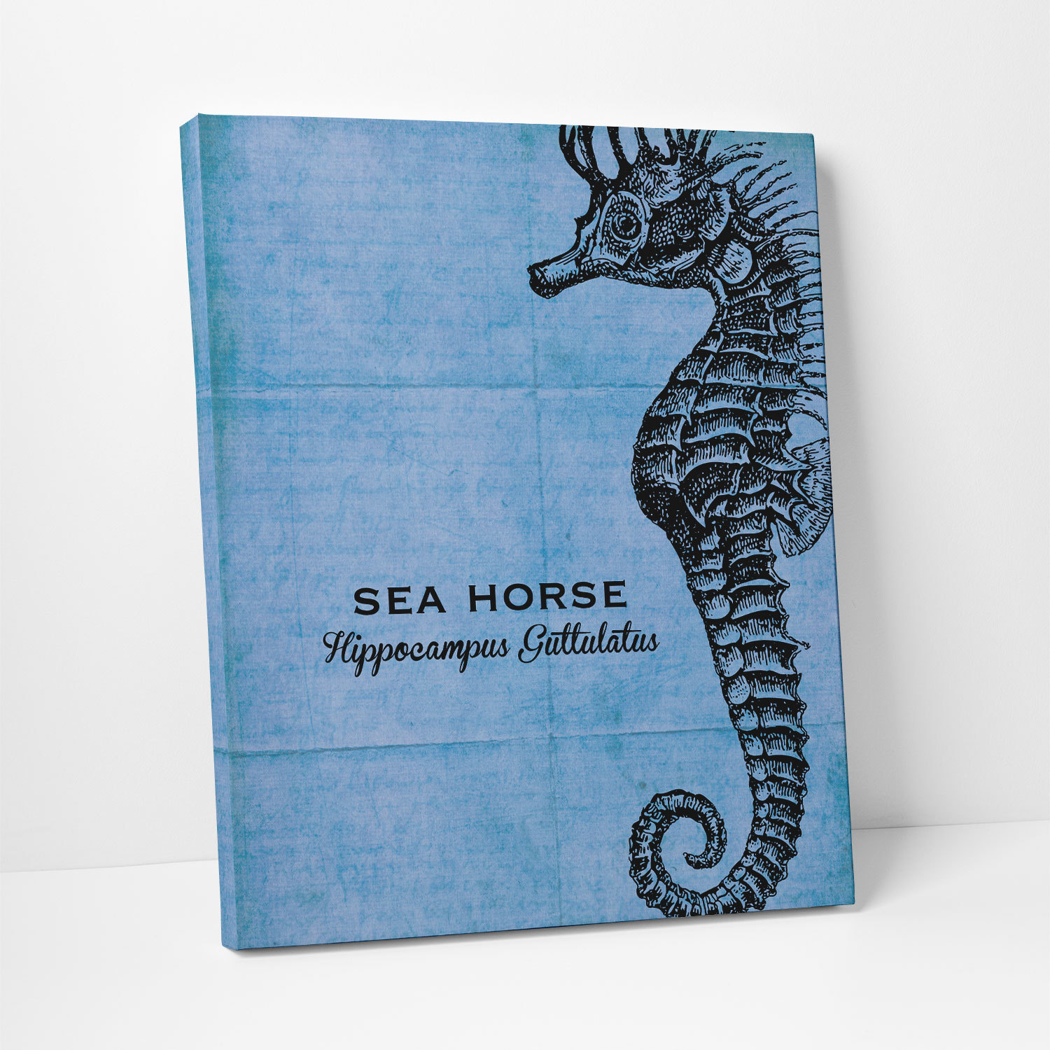 Seahorse in Black Ink and Cobalt Canvas Print- Project Cottage