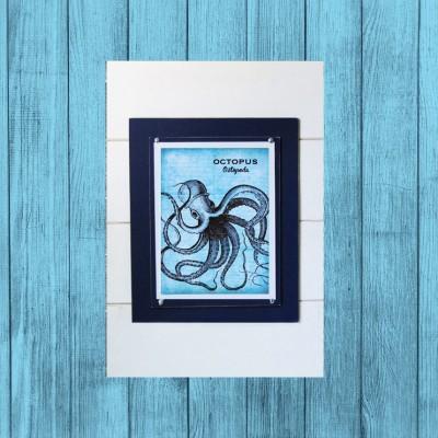 teal blue frame